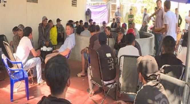 Triệt phá điểm đá gà bắt gần 50 đối tượng tại Đắk Lắk